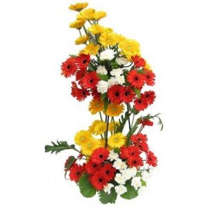 20 Coloured gerberas in a double  Basket