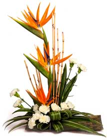 Birds of Paradise flowers basket