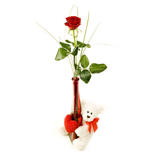 Single Red rose in Vase with Teddy